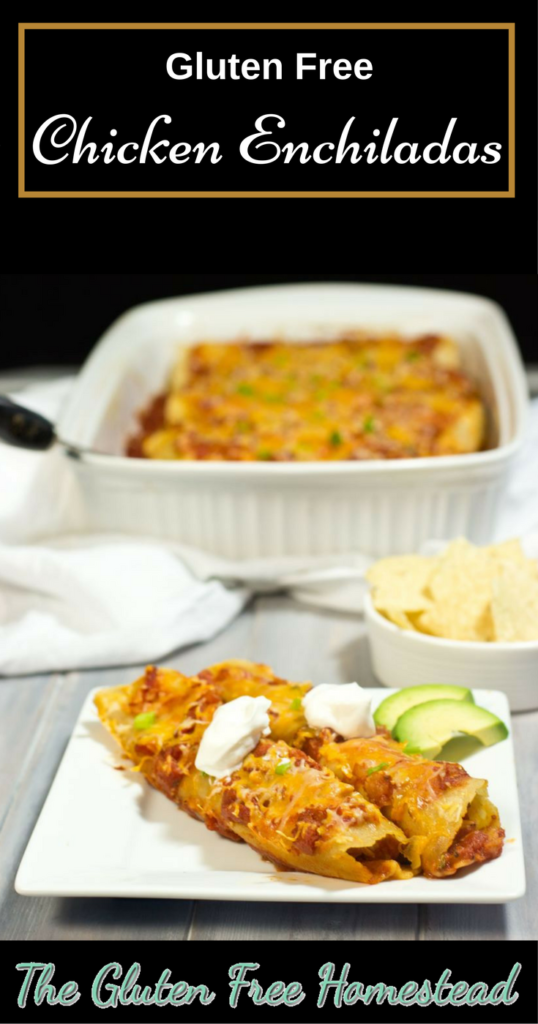 Healthy easy recipe | Gluten free soft corn tortillas | product review | best enchilada casserole