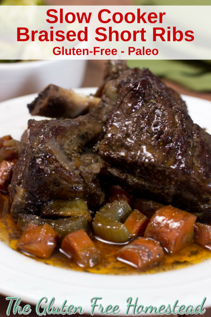 The tenderest, juiciest short ribs! | Short Ribs recipe | Slow Cooker Recipe | Gluten-Free recipe | Paleo recipe