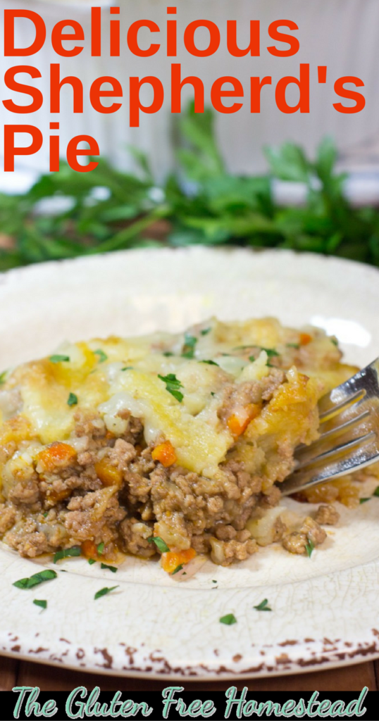 Learn how to make shepherd's pie | Shepherd's Pie | lamb recipe | Healthy ingredients | gluten free recipe |
