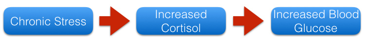 Cortisol 1.001