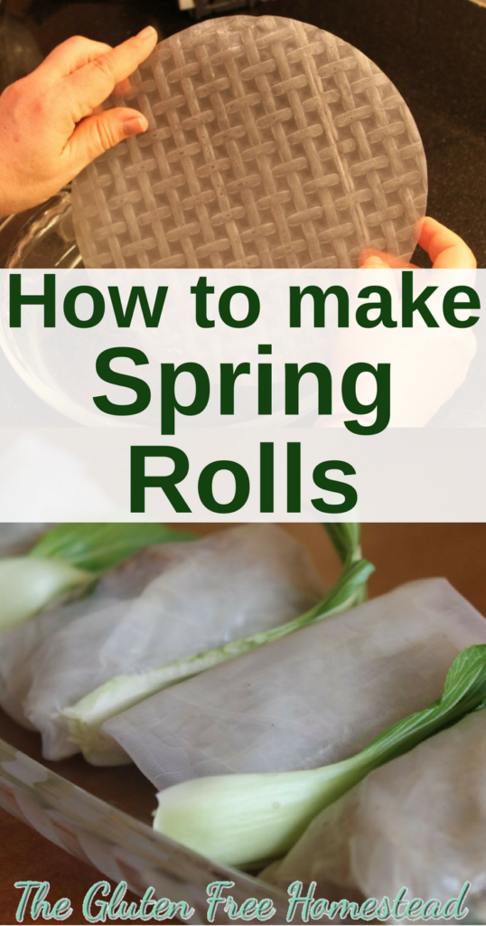 How to make spring rolls | Easy Healthy Gluten Free | Rice paper filled with ground turkey | Simple Homemade Spring Rolls