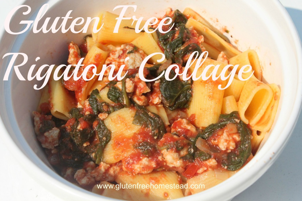 Gluten Free Rigatoni Collage