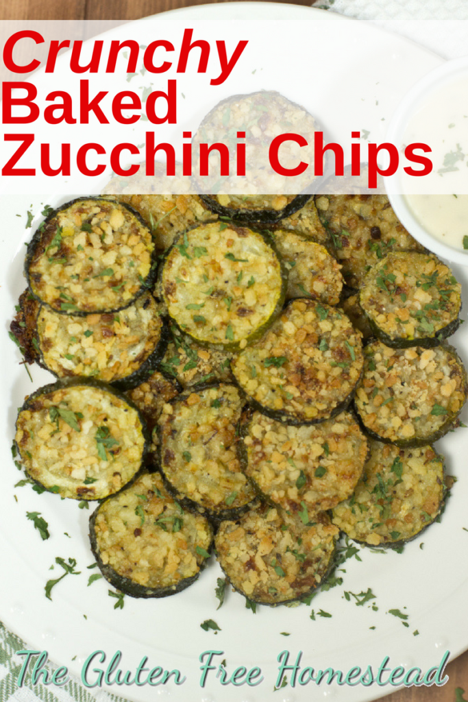 Delicious crunchy Panko breaded parmesan zucchini chips | oven baked healthy chips | easy gluten free recipe | easy game day recipe | football party recipe