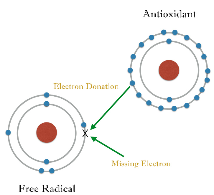 electron-donation-001
