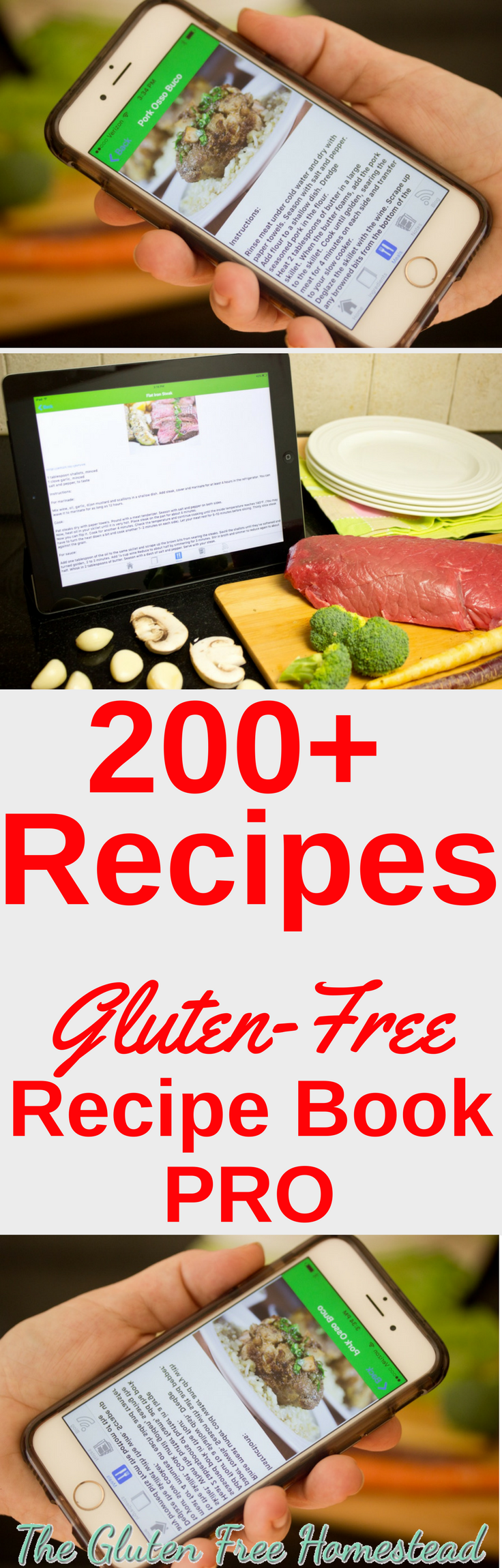 The best gluten free recipe book iPhone app | convenient | iPhone and iPad app | useful when you're on the go | Pick up ingredients while you're at the store | over 200 gluten free recipes ideas | includes over 55 low carb gluten free recipes